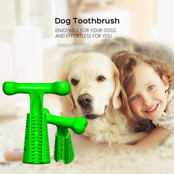 Effective Toothbrush For Dogs