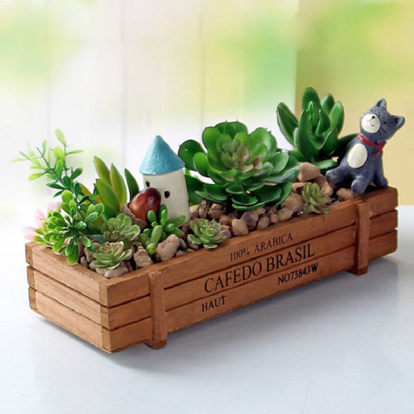 Succulent Plant Wood Container