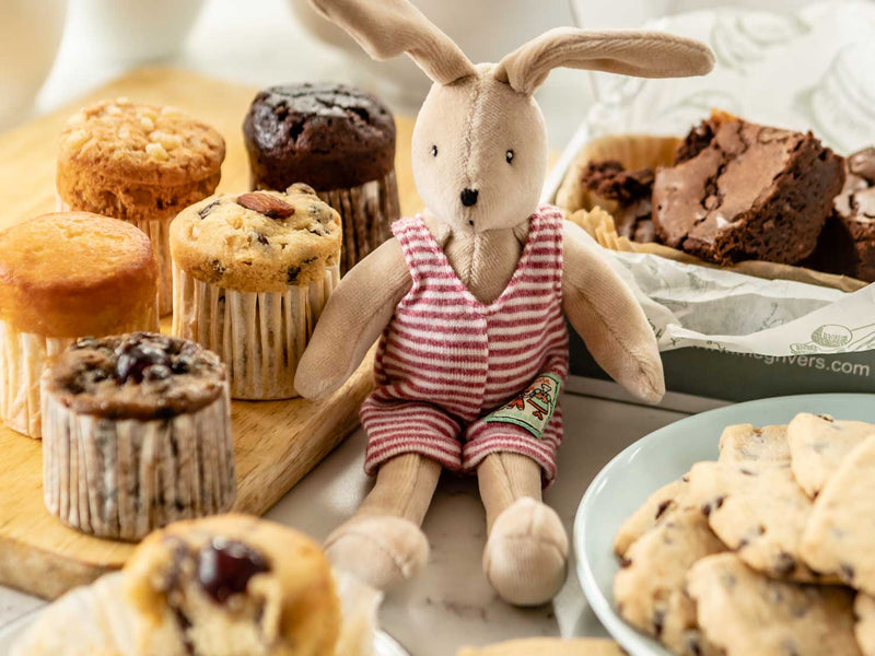 HOPE & JOY new baby hamper, moulin roty sylvian rabbit, chocolate brownie, 6 mini meg cakes, chocolate chip shortbread