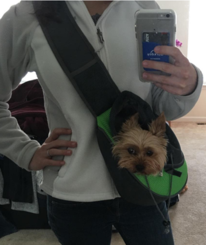Comfortable Over Shoulder Pet Pack
