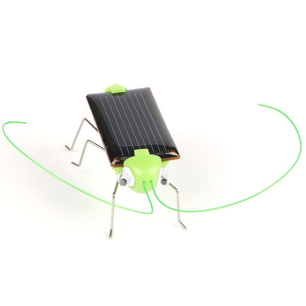 Solar Powered Insects Play And Learn Educational Toys