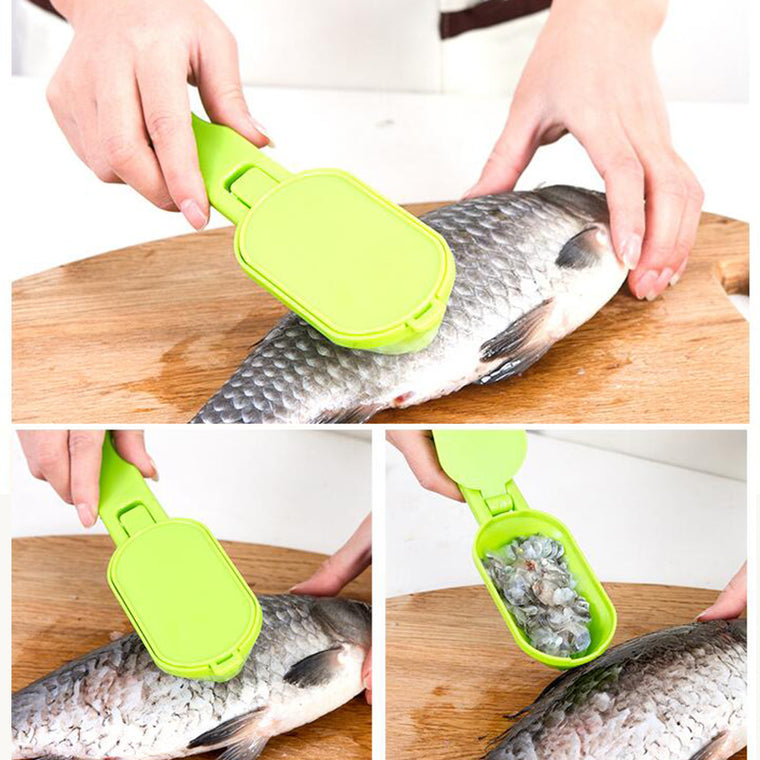 Stainless Steel Scales Fish  Skinner