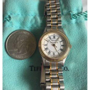 Tiffany & Co. - Ladies Portfolio Stainless Steel Black Roman-Numeral White Dial
