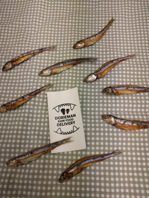 Dehydrated Anchovies - Modern Kibble