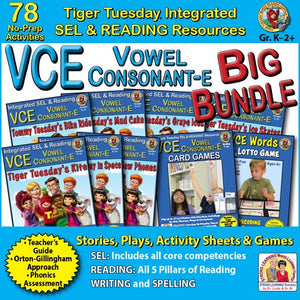 VCE Big Bundle - 78 No Prep Lessons & Activities - Digital Download - 602BD