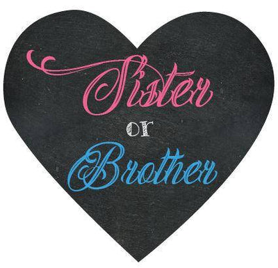 Sister or Brother Gender Reveal Box Sign - BumpReveal
