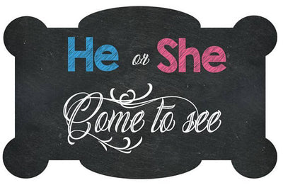 He or She, Come To See Gender Reveal Welcome Sign - BumpReveal