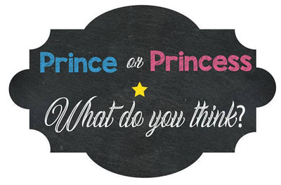 Prince or Princess Gender Reveal Welcome Sign - BumpReveal