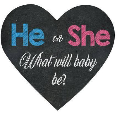 He or She Gender Reveal Welcome Sign - BumpReveal