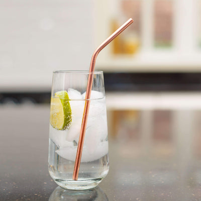 Metal Straws (Set of 4) (4605934338153)