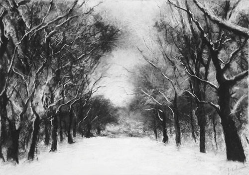 Wooden tree path through the snow - Falling Snow By Jill Tishman