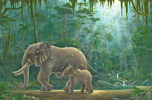 Wells Springs By Robert Bissell - Mother elephant and her baby walking together.