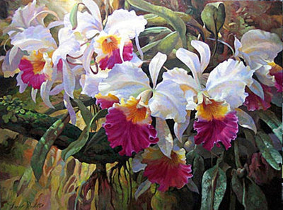 Cattleya Magnificent By Leon Roulette