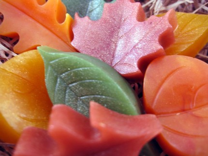 Make Like a Tree Pile of Leaves Soap Set