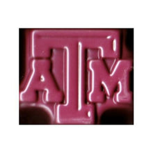 Texas A&M Aggies Jell-O Mold for Jello Shots, Ice Treats, Chocolate, etc. on Sale up to 80% Off at 5to99.com Daily Deals Dollar Store.