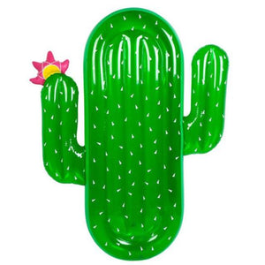 Inflatable Cactus Pool Floatie - inflatable cactus pool float, adult floatie