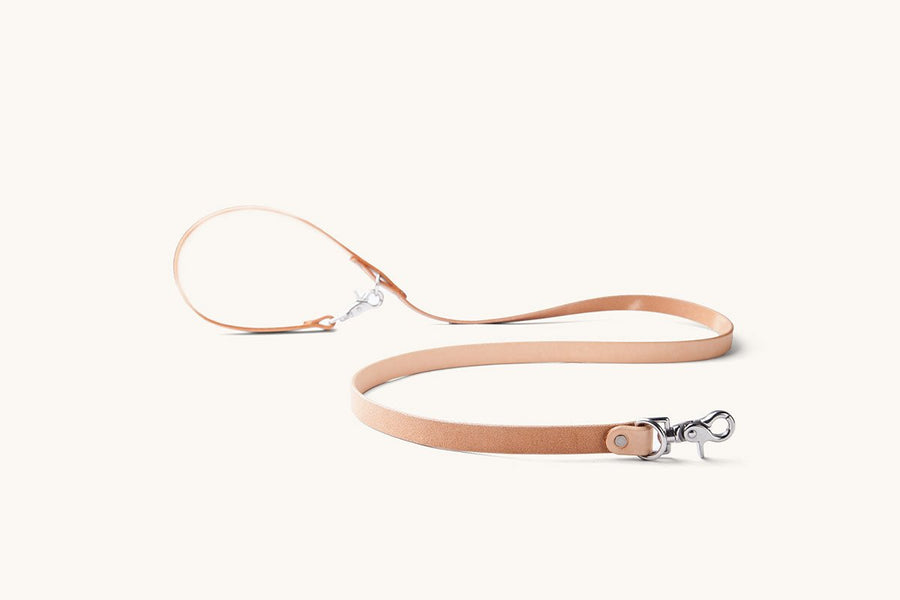 Convertible Canine Lead