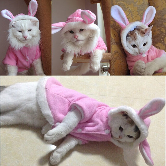Cute Bunny Hoodie For Cats - Kitty Catt
