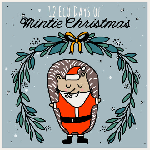 Mindful Mintie Eco alternatives christmass