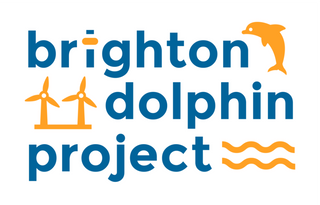 We Support Brighton Dolphin Project