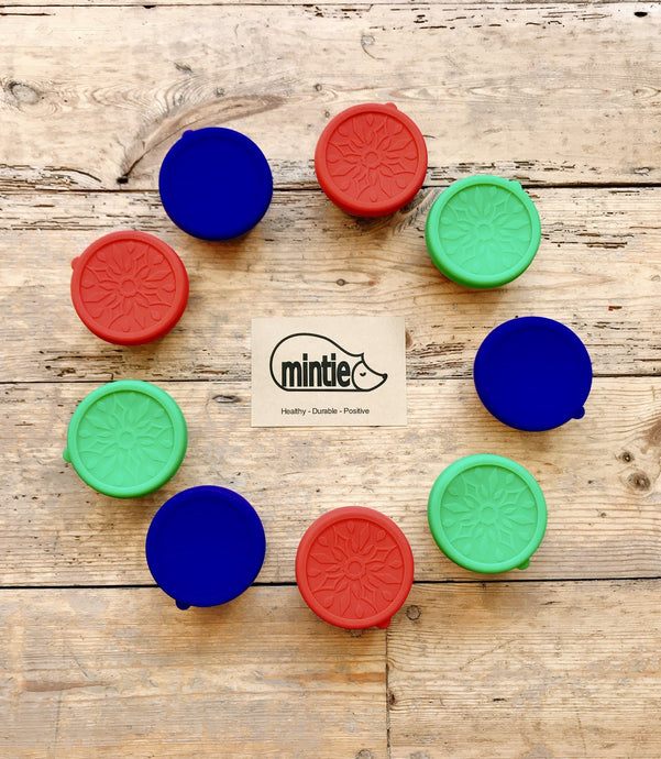Mintie Mini Snack Pot single - environmental life