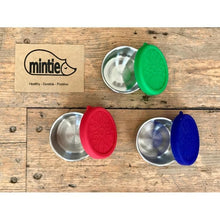 Load image into Gallery viewer, Mintie Mini Snack Pot Set - environmental life