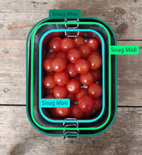 Load image into Gallery viewer, Mintie Snug Mini Stainless Steel Lunch Box