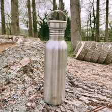 Load image into Gallery viewer, Mintie 750ml Stainless Steel Water Bottle - environmental life