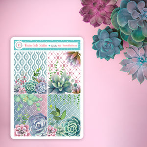 Watercolour Succulent Full Box Sampler Stickers