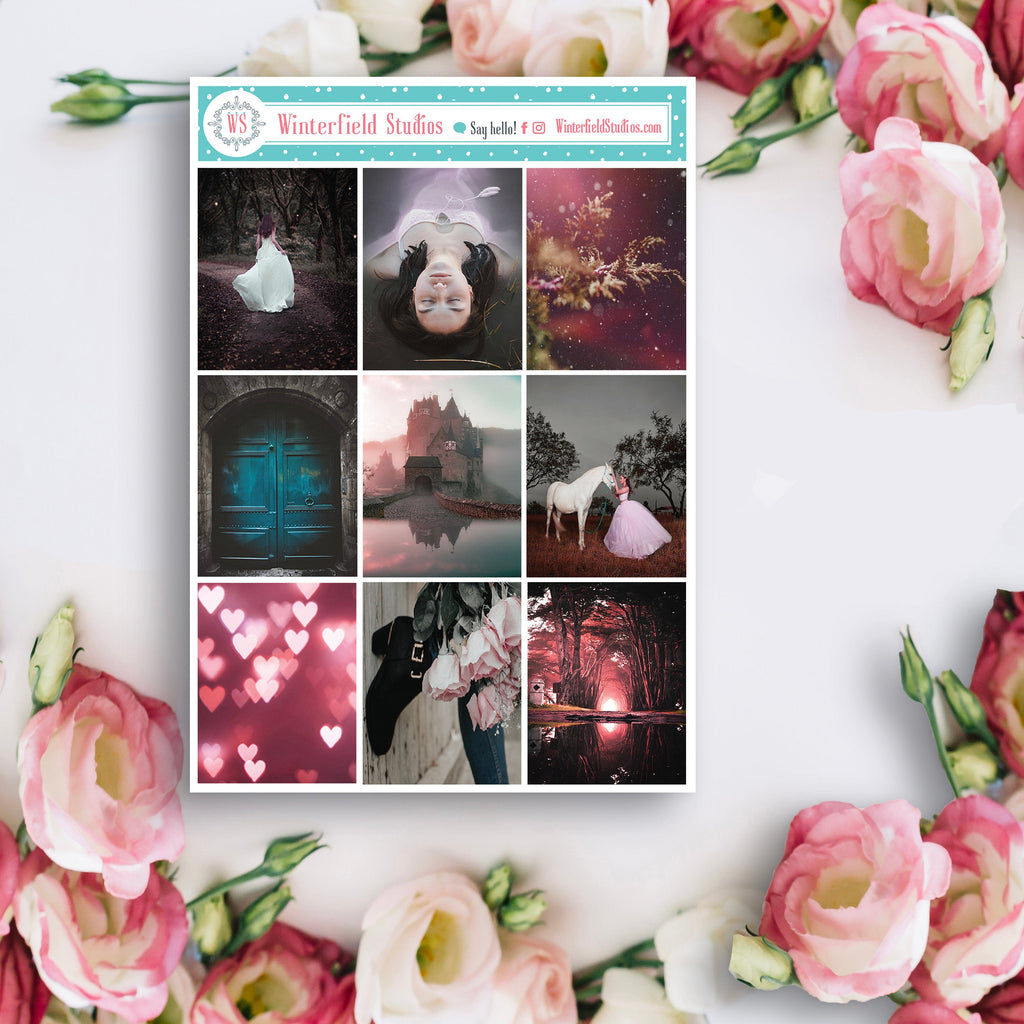 Fantasy Daydream Photo Planner Stickers - Pretty Pink Stickers - Castle Stickers - Fits Erin Condren, Happy Planner