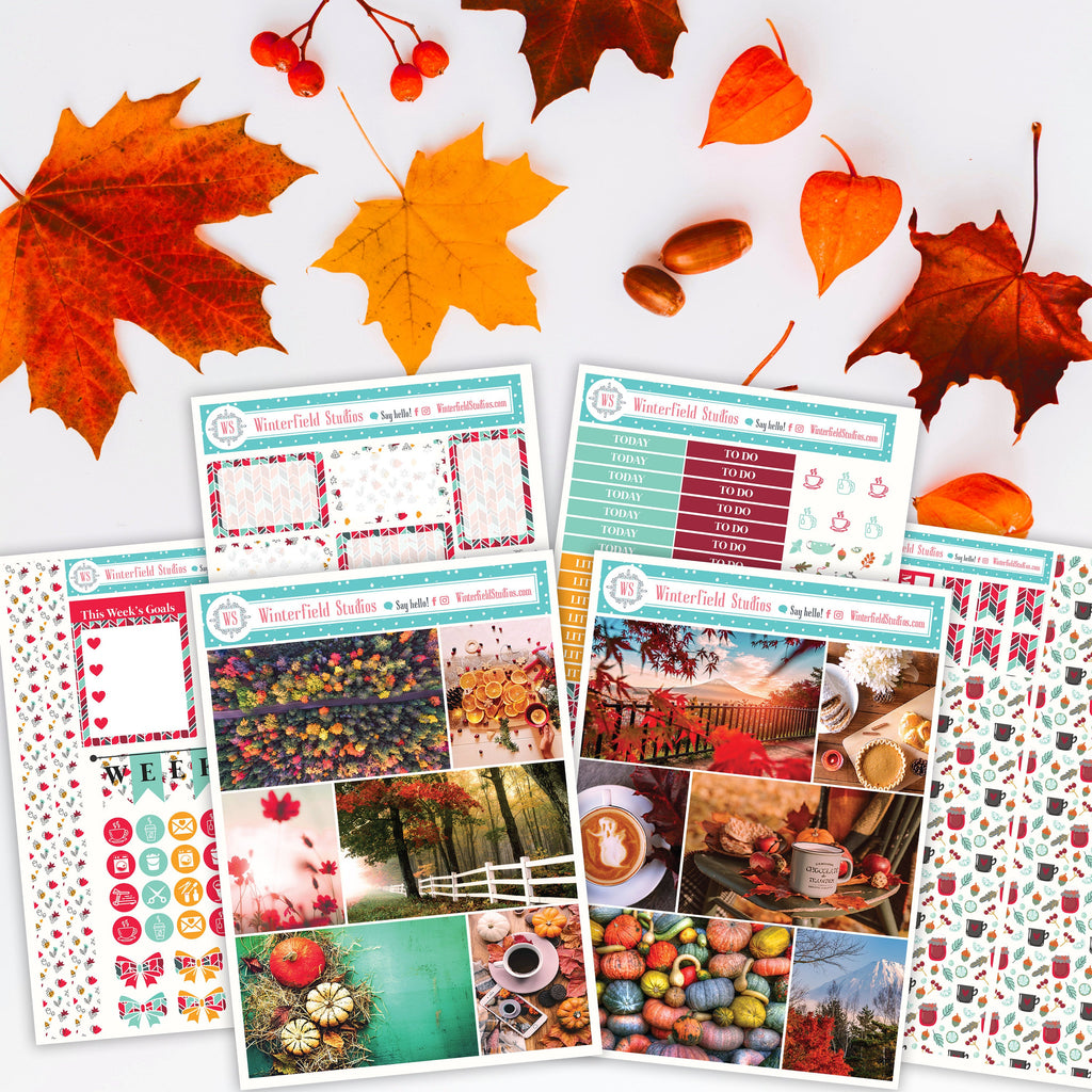 Autumn Harvest Stickers Kit - Fall Monthly Sticker Kit - Photo Stickers - Fits Erin Condren, Happy Planner