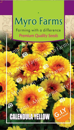 Calendula Yellow