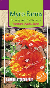 Calendula Red/Calendula officinalis