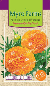 Marigold Inca Orange