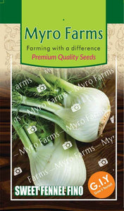 Premium Herb Seeds - Sweet Fennel