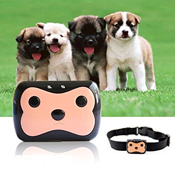 Pet GPS Tracker - CreatedOn Disney