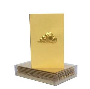 Precious Shell Boxed Mini Note (8)
