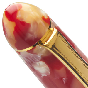 Platinum #3776 Celluloid Fountain Pen - Koi