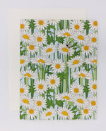 Daisies Greeting Card (Single)