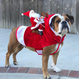Funny Christmas Costumes For Your Dog With Santa