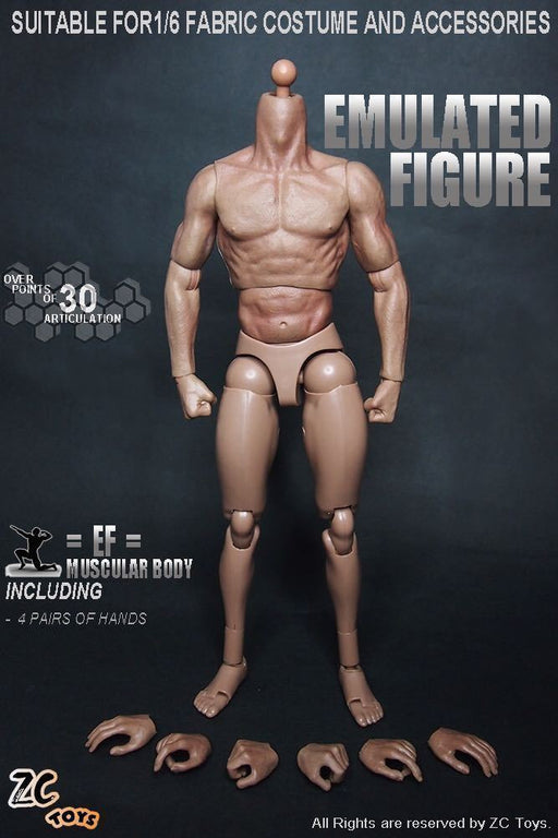 "ZC Toys 1/6th Muscular Body Fit 12"" Hot Toys Male Head Sculpt Hobbies"