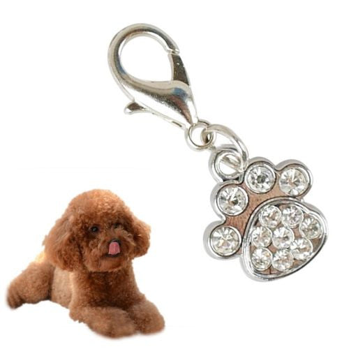 Metal Dog Tag Keychain Collar Pendant Husky Samoyed Teddy Paw Bone Shape Charms
