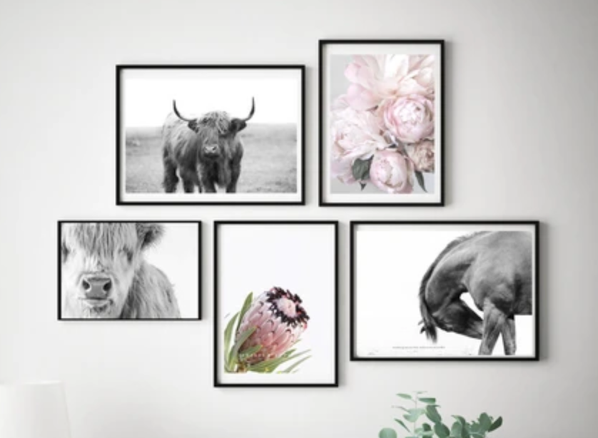 Quick tips for hanging your By The Horns print