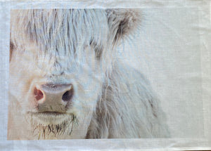 Tea Towel - The White Highland Cow