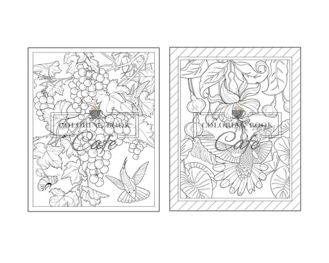 Hummingbird Coloring Book: An Adult Coloring Book Beautiful Flowers and Nature Patterns