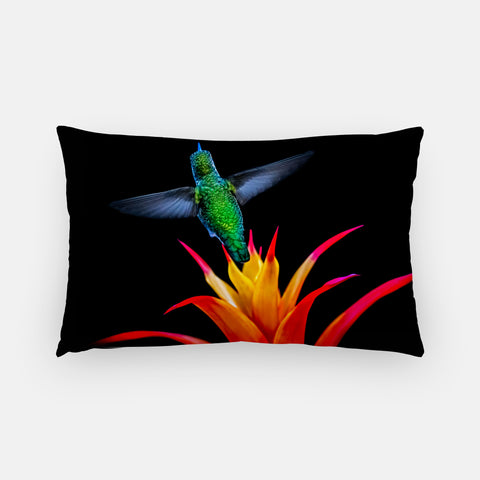 Burst Of Color photograph printed on a lumbar pillow.
