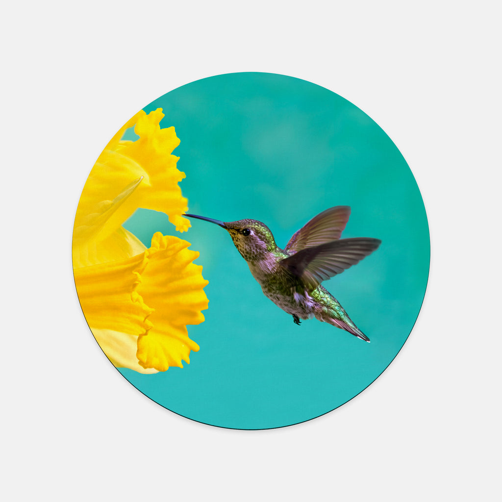 Daffodil photograph printed on a round mouse pad.