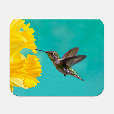 Daffodil photograph printed on a rectangular mouse pad.