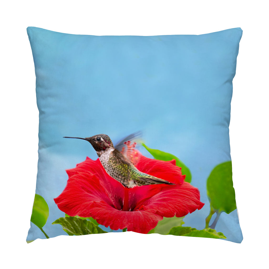 "Fairy Wings hummingbird photograph on a 20"" square pillow."