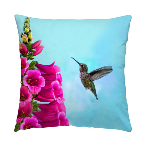 "Feathered Throat hummingbird photograph on a 20"" square pillow."